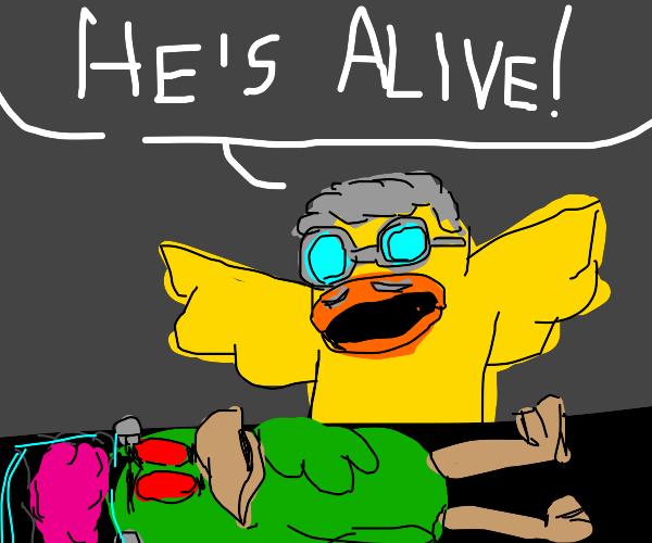 smart duck