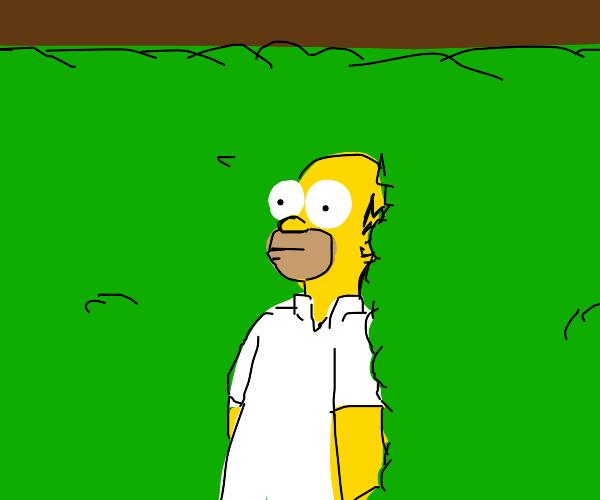 Homer bush meme