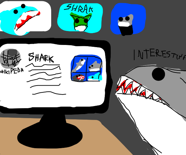 shark reads about sharks on wikipedia