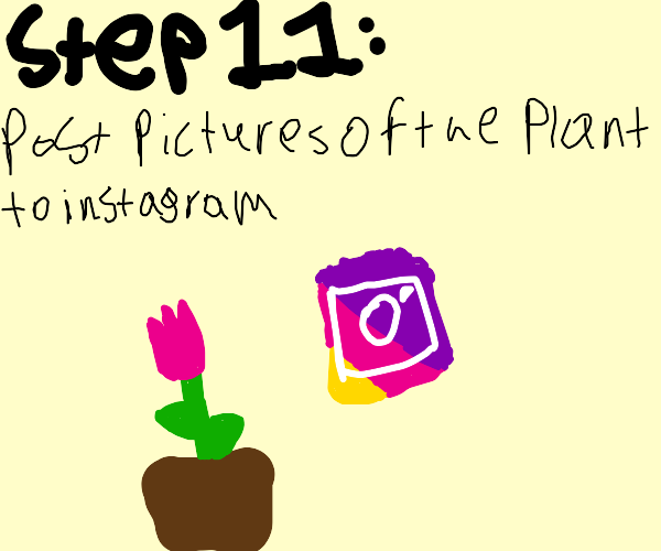 Step 10: The plant will flower
