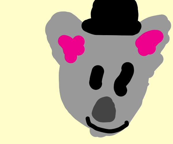 Koala wearing a Hat