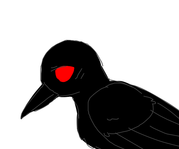 Black and red crow