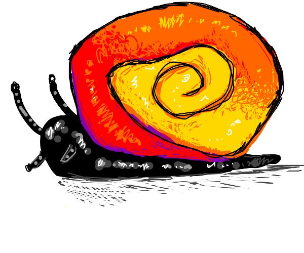 Rainbow polka dot snail