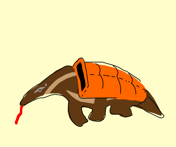 Anteater wearing a Coat