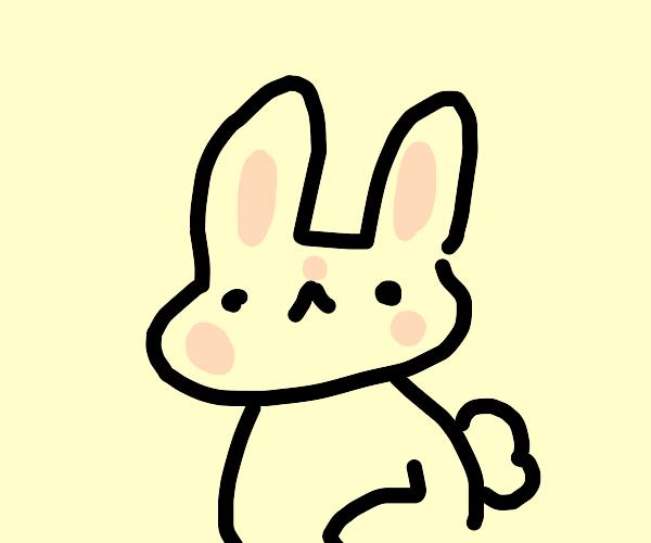 definitely a rabbit