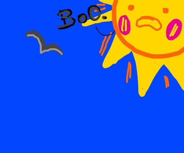 Sun says 'boo' to flying grey bird