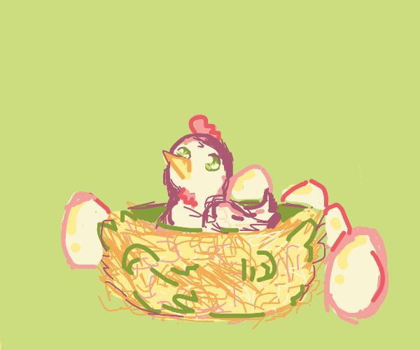 ADORABLE Chicken in nest