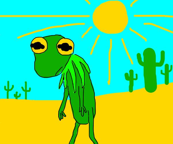 kermit walks  in the desert