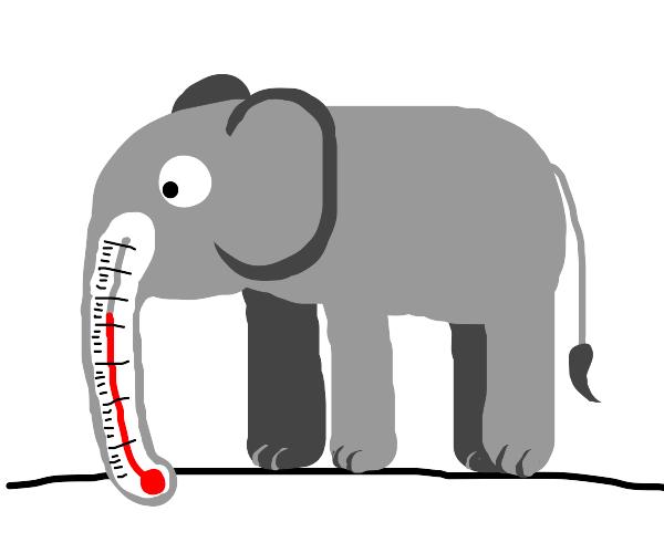Elephant thermometer