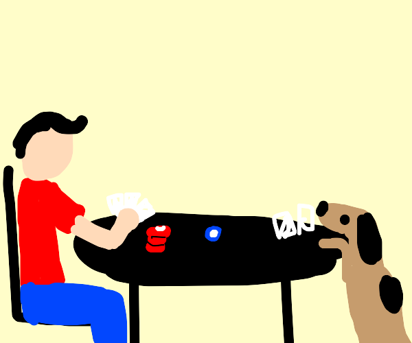 A dog and his human are playing poker