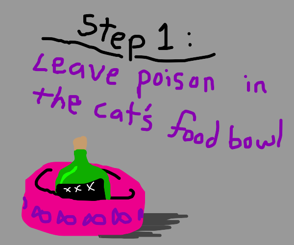 Steps showing how cat got poisoned
