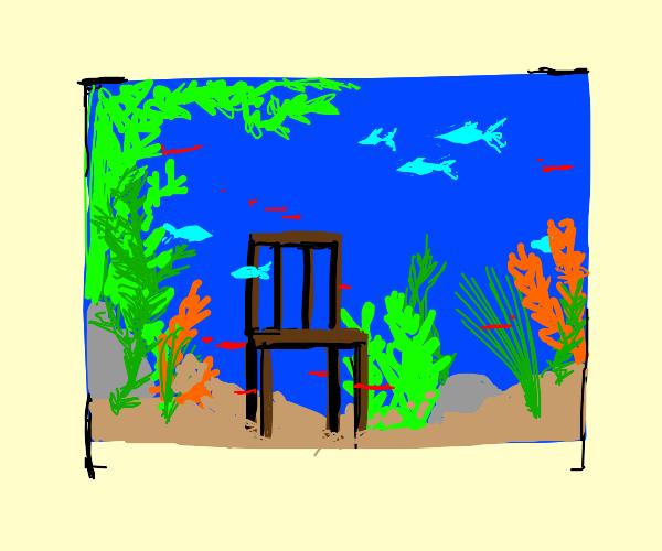 Chair in an Aquarium