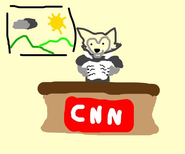 Werewolf Forecasting