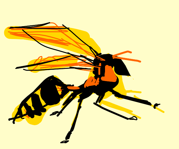 Detailed wasp :))