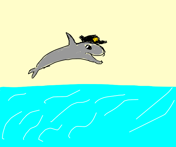 Dolphin playing in the ocean