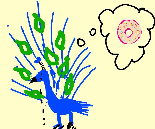 Sad peacock thinking of donut