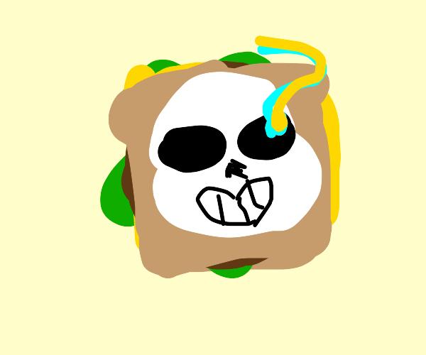 a SANSwich