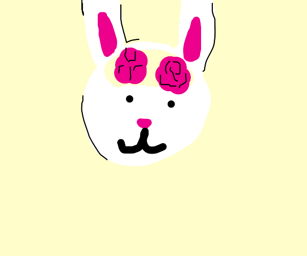 Rabbit Brain Two