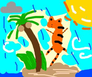Tiger in a rainy sunny windy island