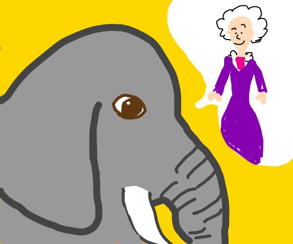 an elephant (with tusks)