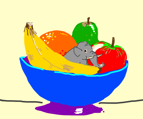 Elephant in a Bowl