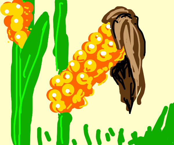 Corn with hair