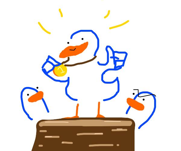 Winner Duck