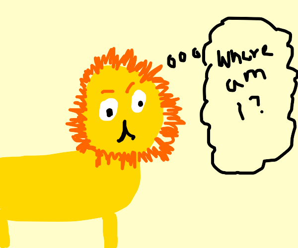 Lost Lion