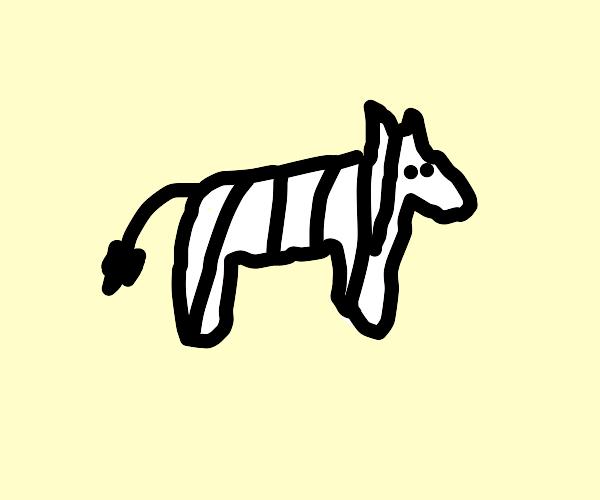 Zebra stuck in a fence