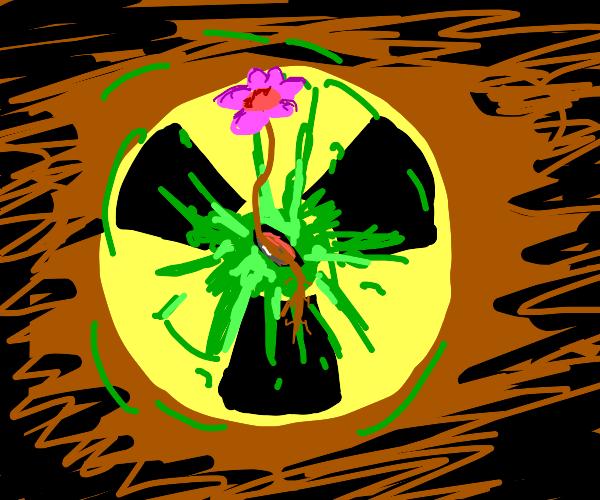 Seed = radioactive