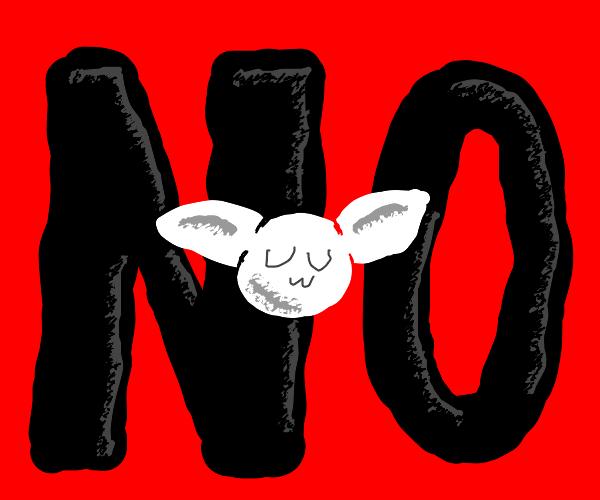 No Furries