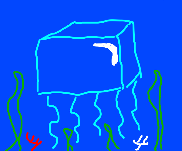 Square Jellyfish