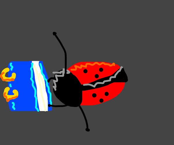 Ladybug with math book