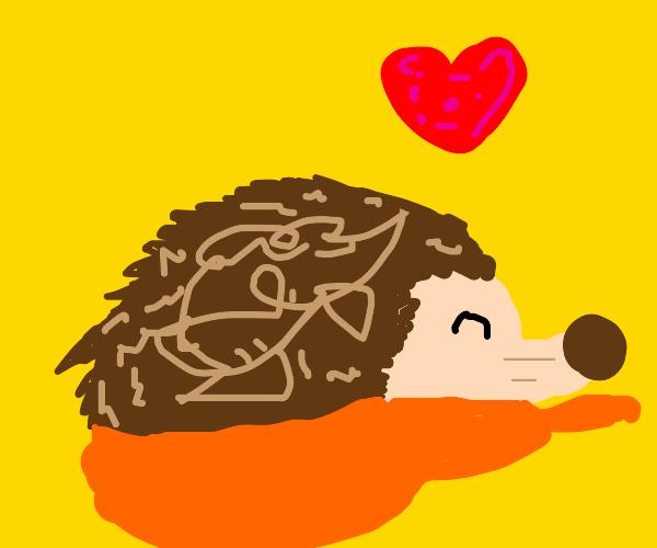floofy hedgehog