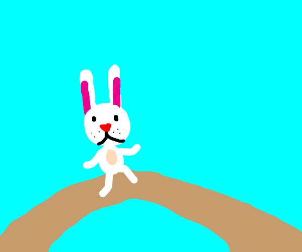 Rabbit crossing a bridge