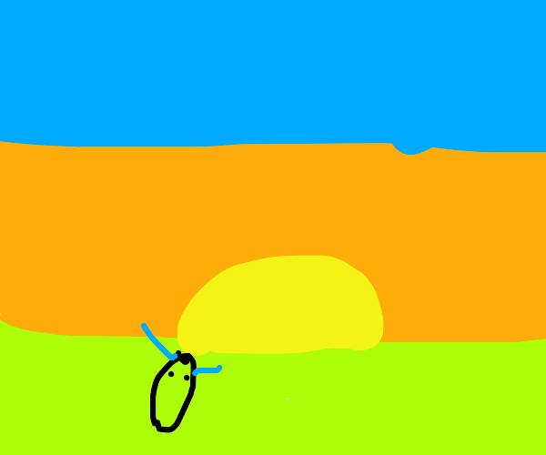 Snek cries at the beautiful sunset