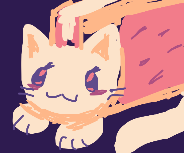 Pop Tart Cat requires sweet relief from life