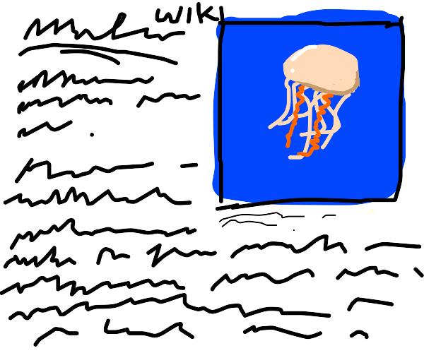 Jellyfish on Wikipedia