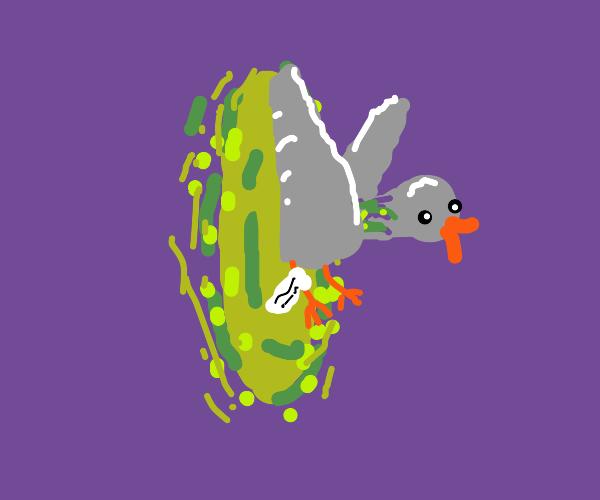 Time-traveling messenger pigeon