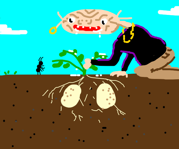 Potato thief