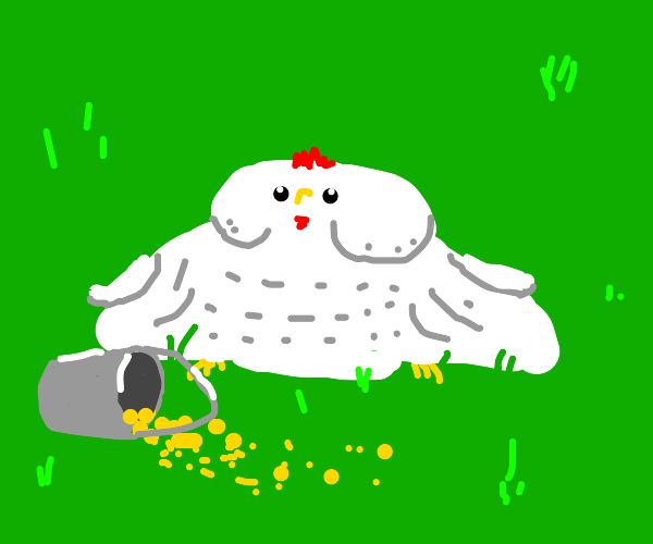 fat chicken on a grassy field