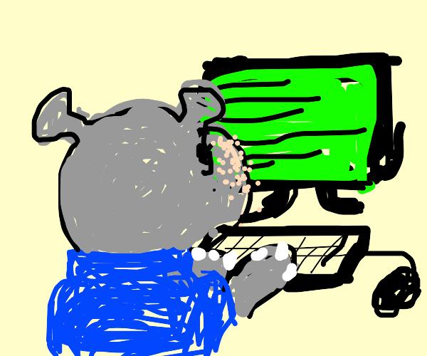 Hippo Programmer