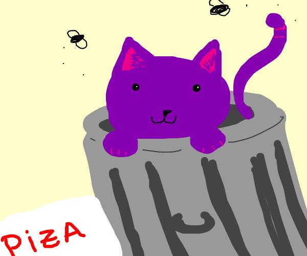 Purple cat in trash