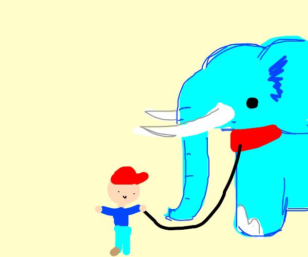Pet Elephant