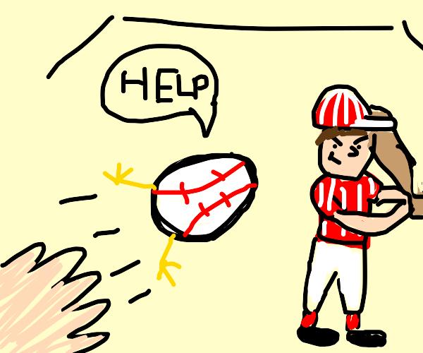 Baseball egg