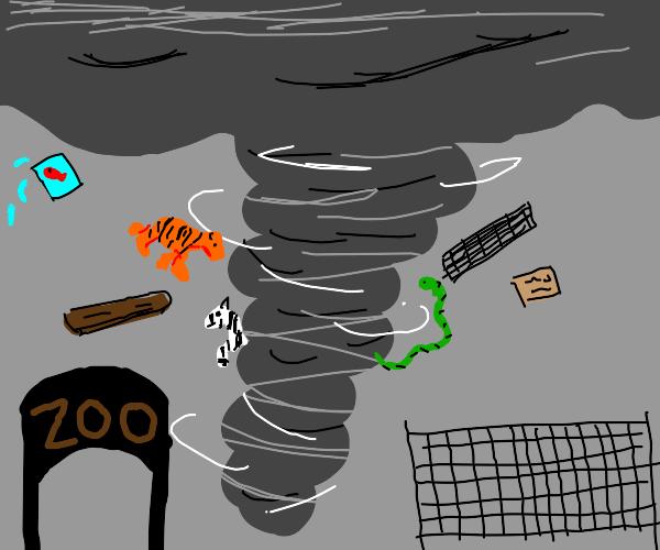 Tornado decimates zoo