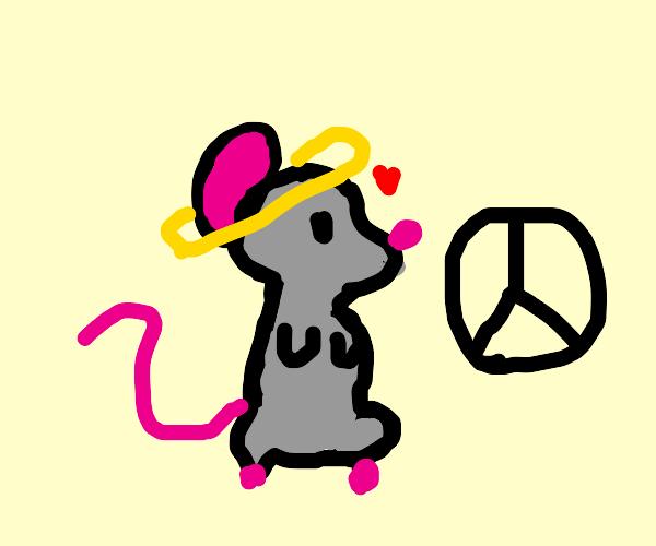 Peaceful Rat