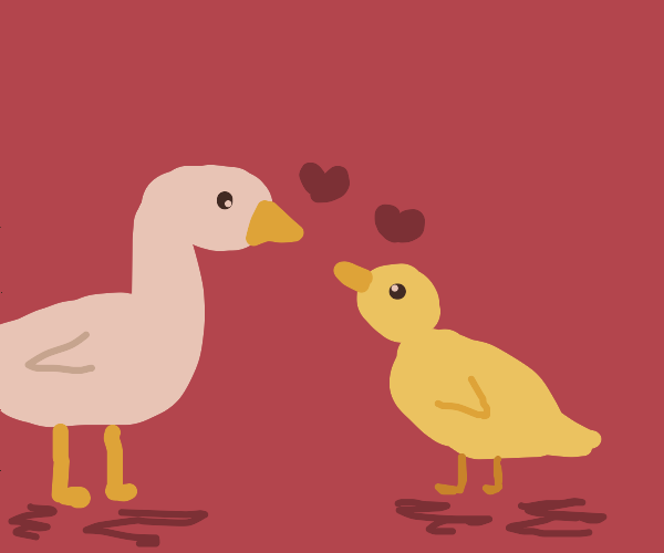 White goose loves yellow duckling