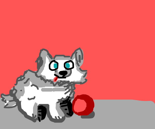 small white dog with a red ball