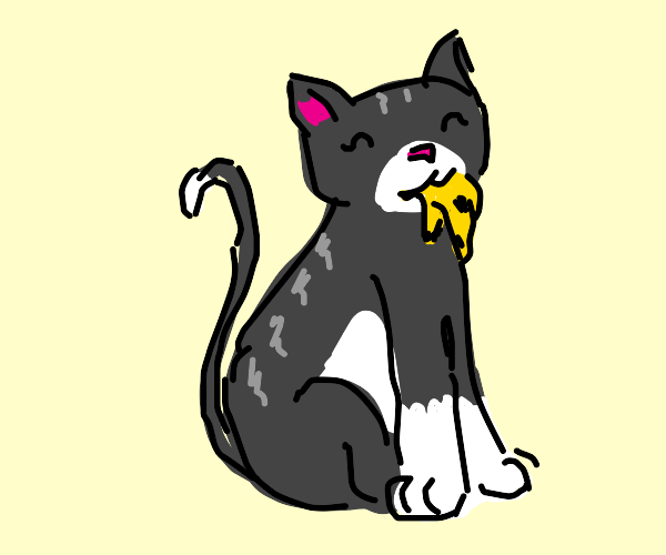Cute grey and white cat loves his banana peel